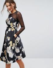 Coast | Платье с сетчатой вставкой Coast Mia - Мульти | Clouty