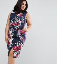 Coast | Платье-футляр с цветочным принтом Coast Plus Penelope - Темно-синий | Clouty