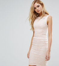 Vesper | Кружевное платье-футляр Vesper - Мульти | Clouty